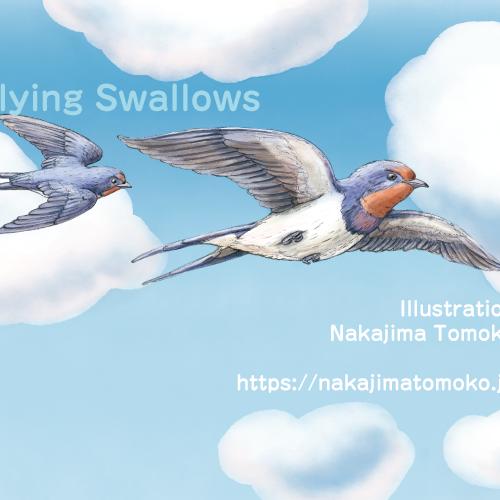 リアルでかわいい動物イラストを描きました。4ツバメ編