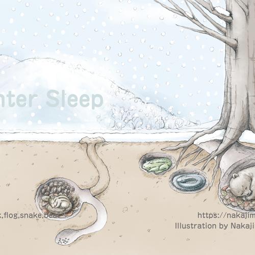 鉛筆画で、かわいい動物と冬景色を描きました。2冬眠編